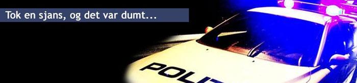 Politibil med blålys - Førerkortsaker - førerkort